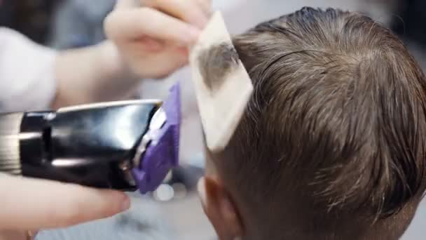 Professional hairdresser doing a new haircut on wet hair with the help of ridge and electric shaver . Men barber shop. New haircut– stock footage