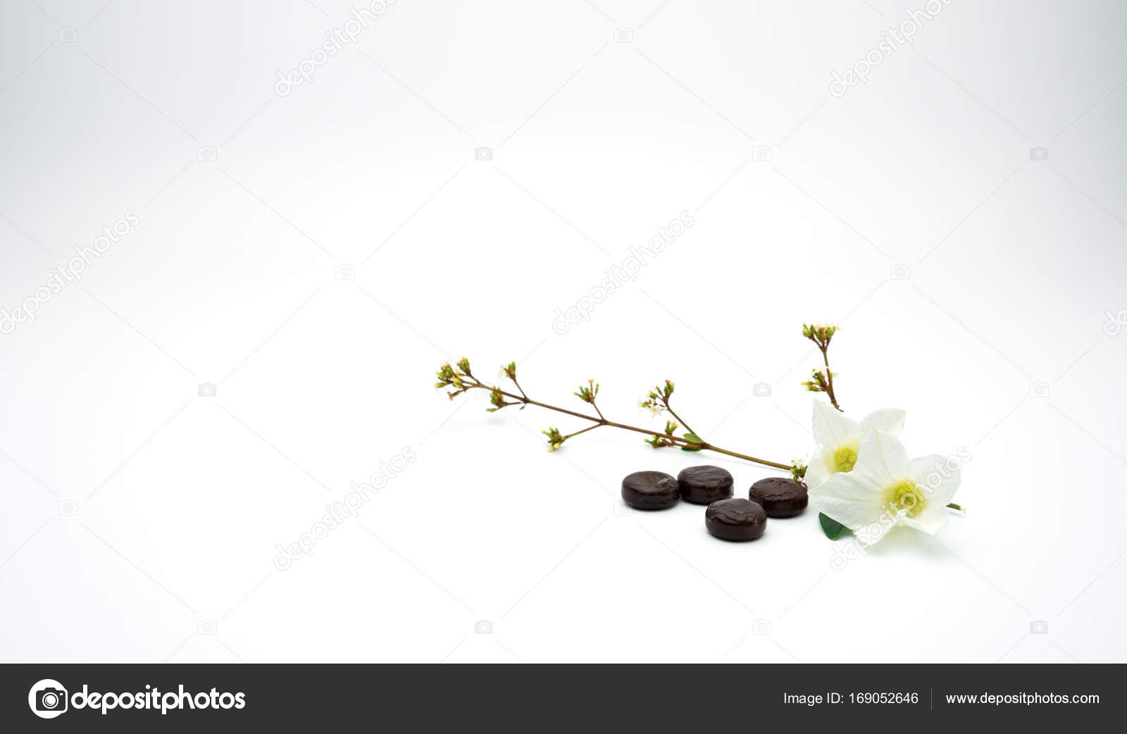 Herbal medicine lozenges for relief cough put near white flower and herbal medicine lozenges for relief cough put near white flower and branch on white background with mightylinksfo