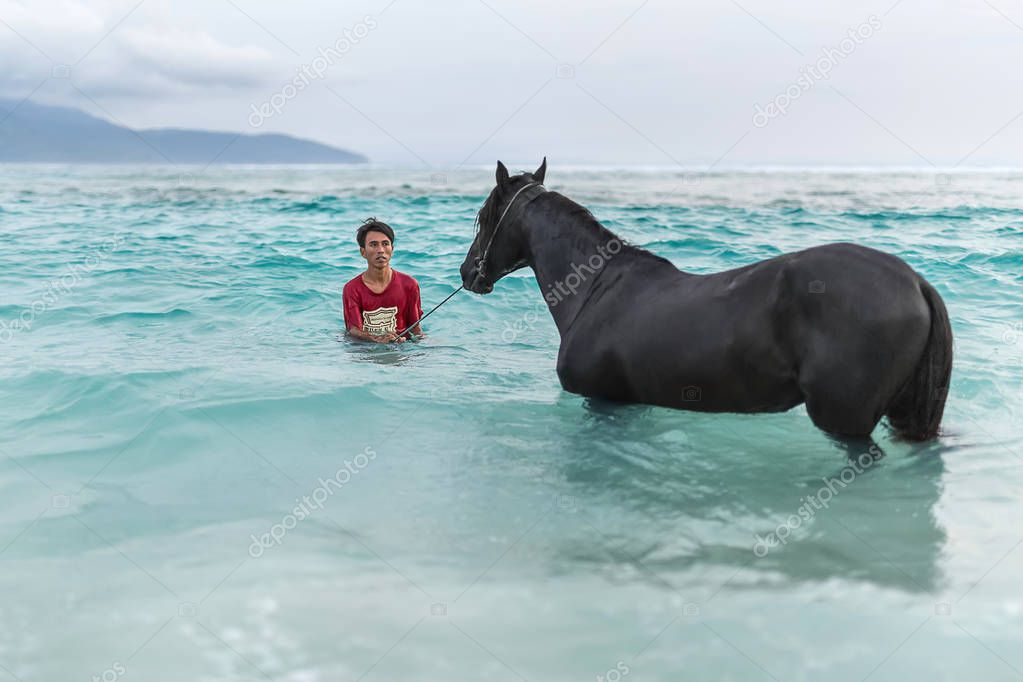 Man with horse in sea