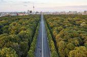 Dálnice mezi zelenými stromy v Berlíně