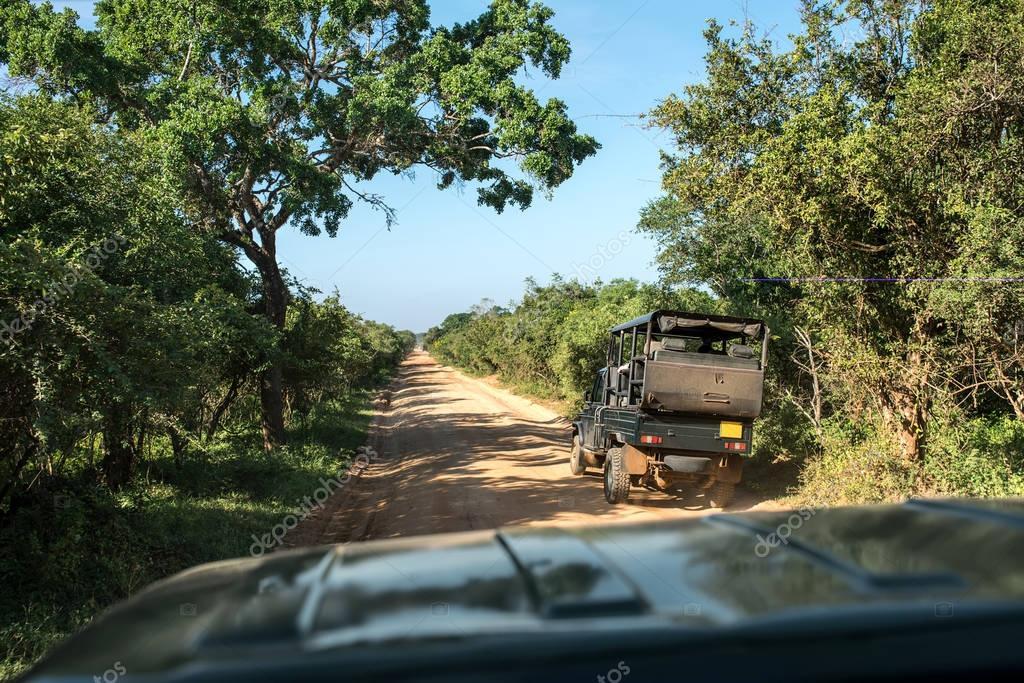 Safari jeep tour on Sri Lanka