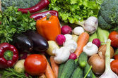 Fresh vegetables tomatoes cucumber squash and greens background