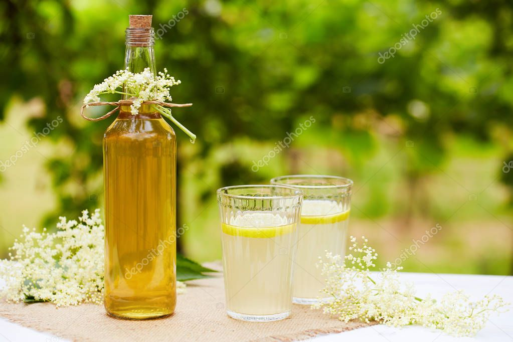 Homemade elderflower syrup in a bottle with elderflowers