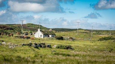 Crofters Cottage, Scottish Highlands