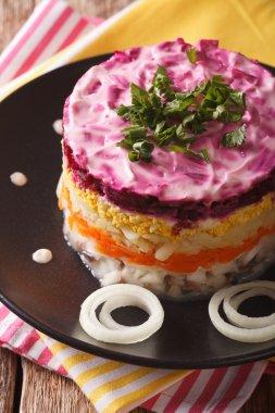 layered salad of herring under a fur coat close-up. vertical
