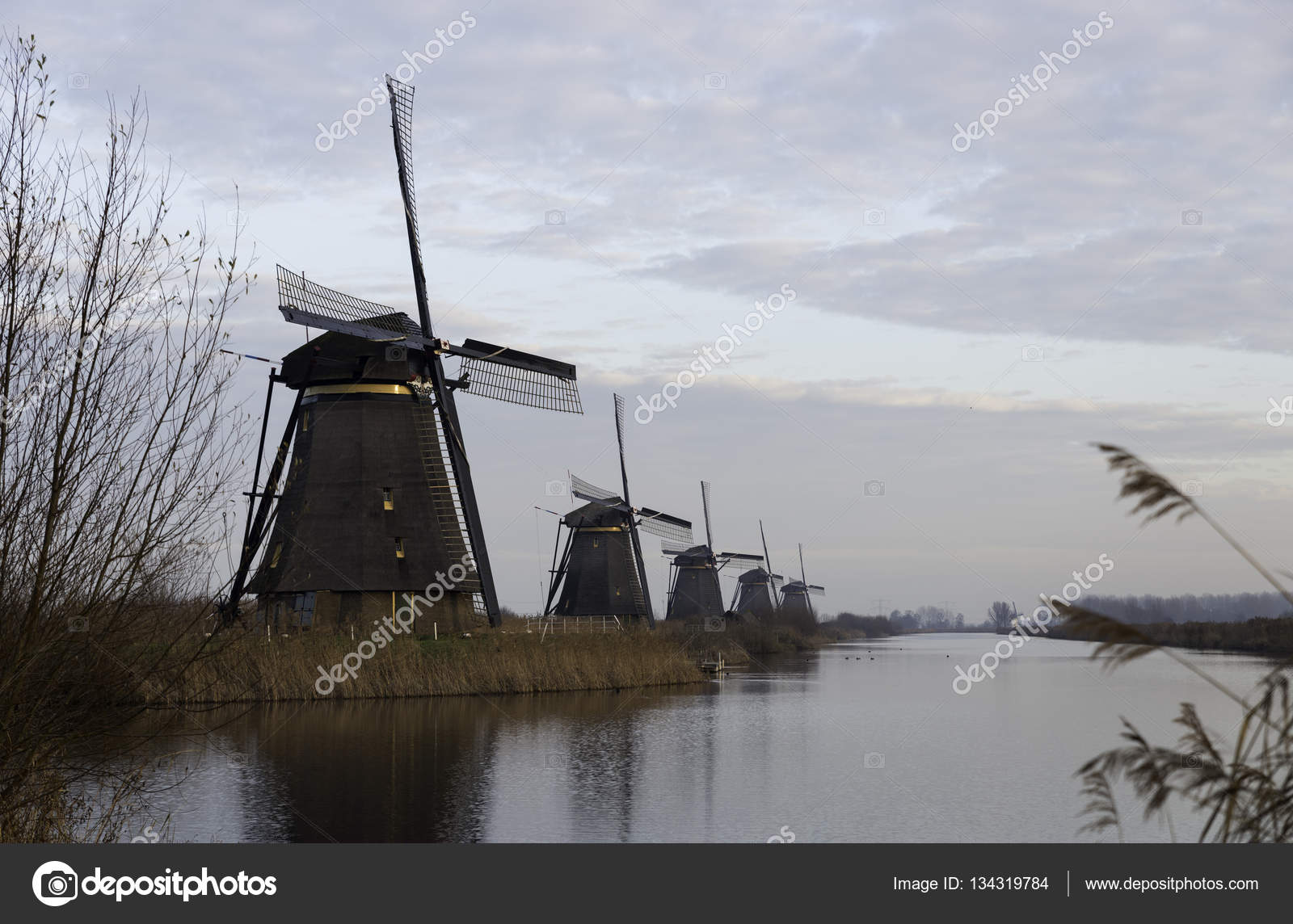 windm hlen in kinderdijk holland stockfoto compuinfoto 134319784. Black Bedroom Furniture Sets. Home Design Ideas