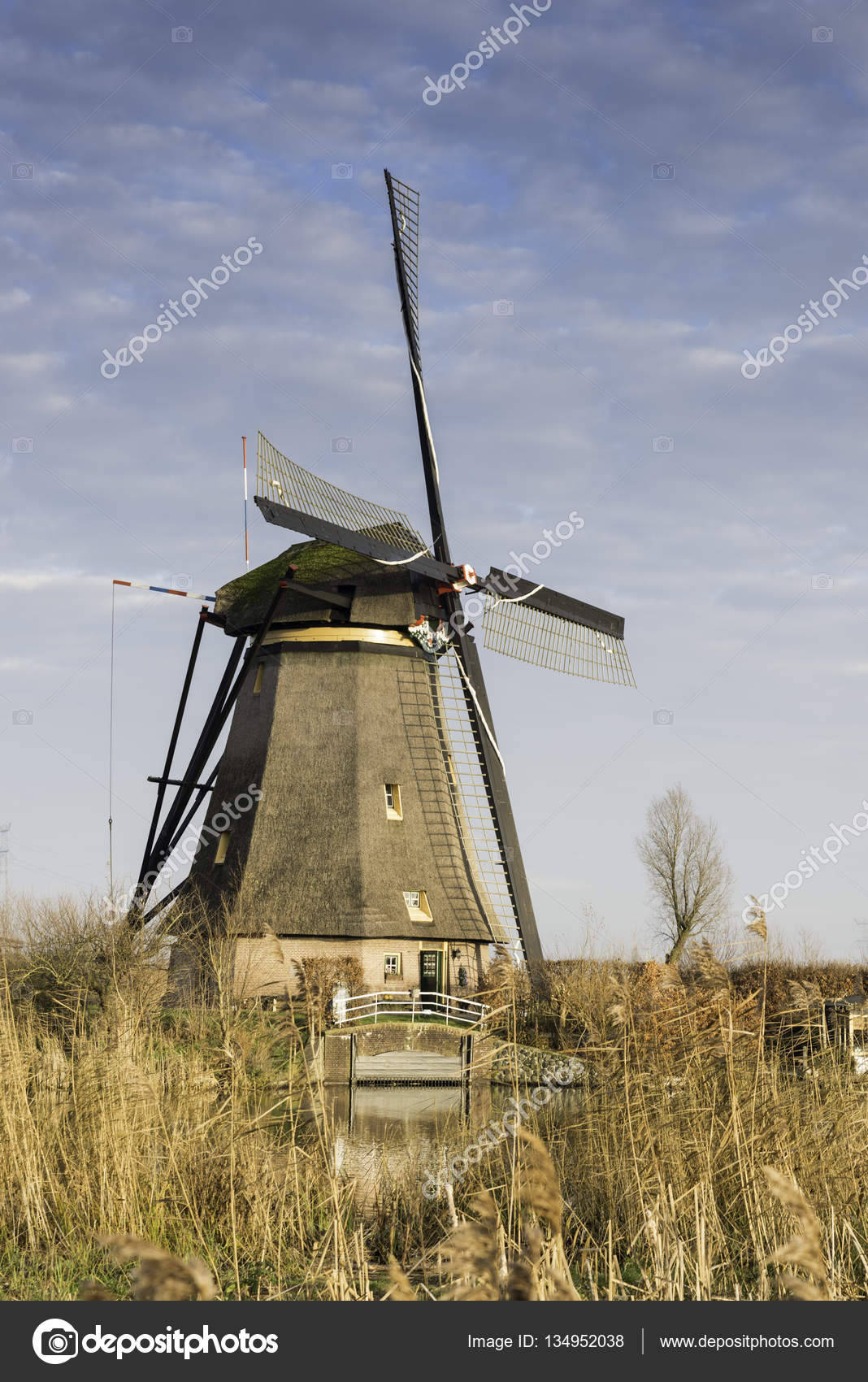 windm hlen in kinderdijk holland stockfoto compuinfoto 134952038. Black Bedroom Furniture Sets. Home Design Ideas