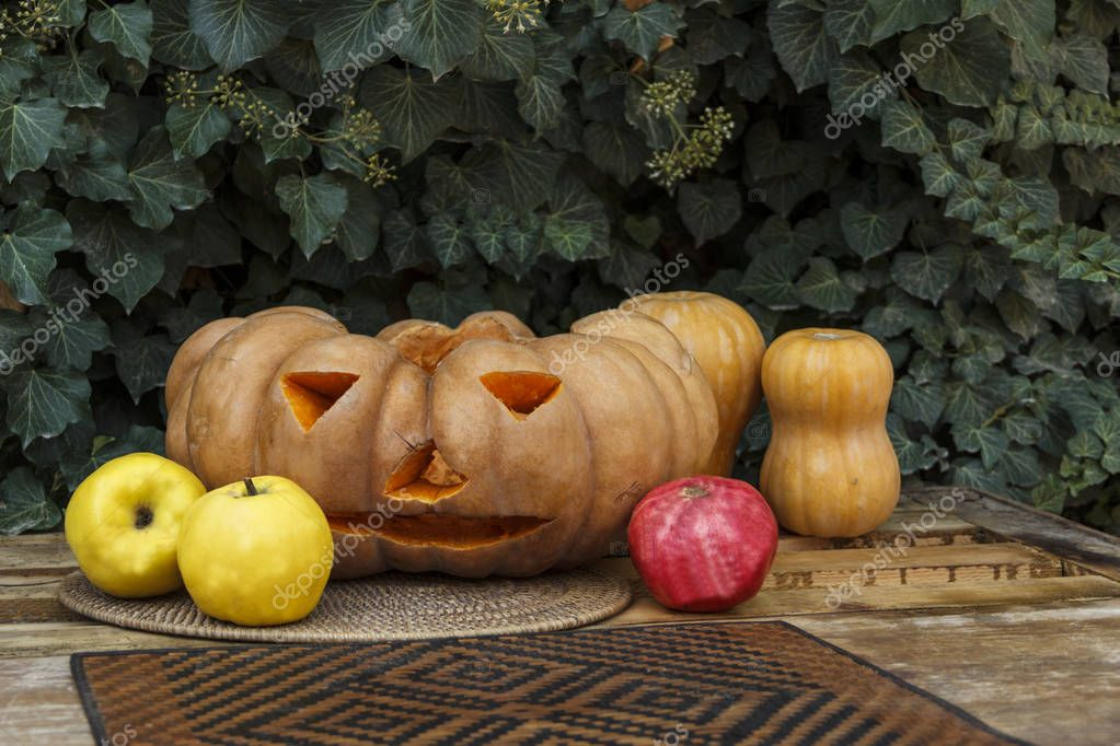 Pumpkin, quince, pomegranate against a background of flowering ivy. Halloween.
