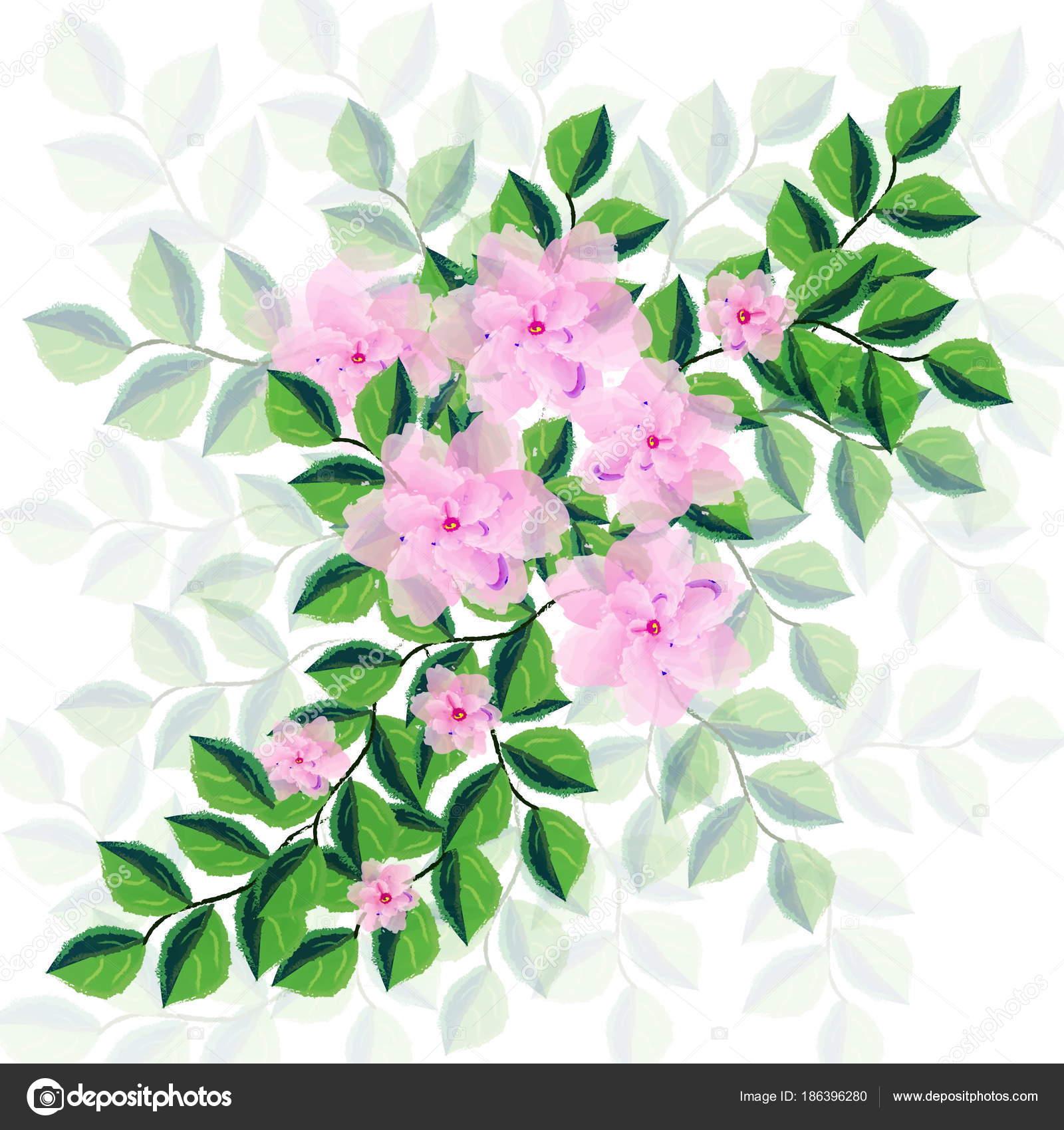 Flores Las Plantas Patron Decorativo Ilustracion Textura Papel