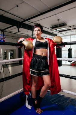 Young pleasant boxer woman in boxing equipment standing on ring