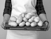 Fotografie Detailní záběr na moderní žena farmář nosí zástěru zobrazeno brambory