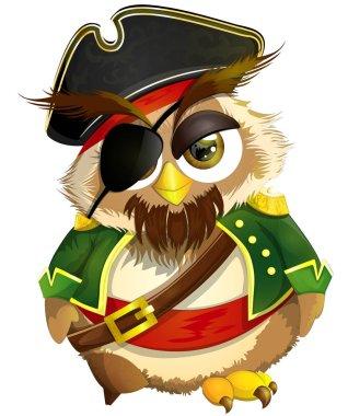 cool owl pirate