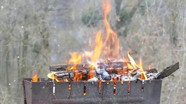 Burned Firewood Grill Burning Coal Fire Heat Fireplace Picnic