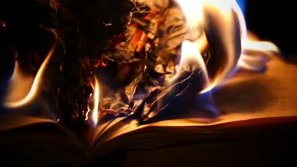 The pages of the book are on fire. The book archive is on fire.