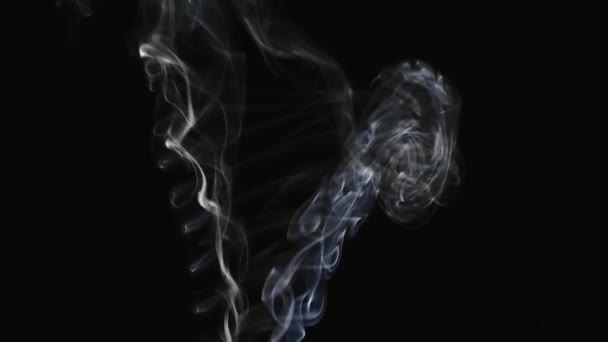 Cigarette smoke stock footage free harmful facts about smoking cigarettes