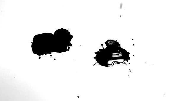 Černá skvrna na bílém pozadí. Kapky inkoustu kape na bílý kus papíru.