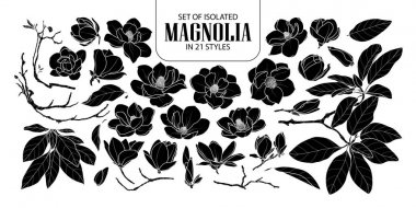 Set of isolated silhouette magnolia in 21 styles. Cute hand draw