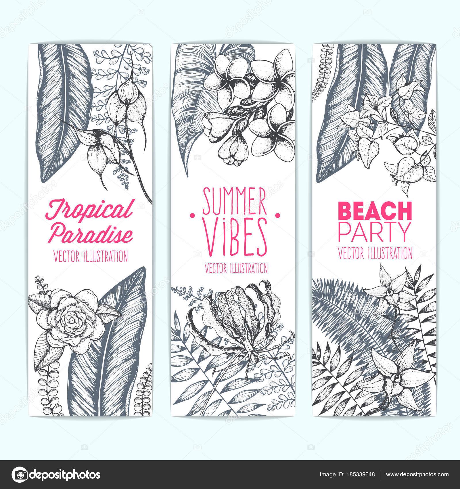 Tropischen Palmblätter Design Vorlagen Vektor Karten Set Mit ...