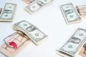 dollari americani in trappole per topi
