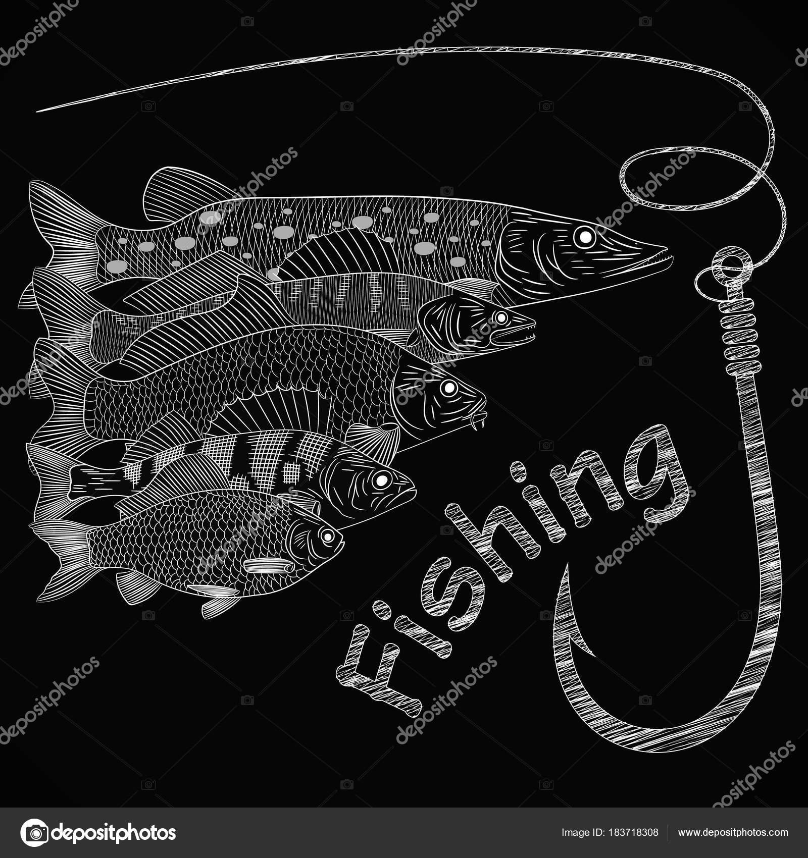 Kresba Tema Lov Sladkovodnich Ryb Stika Candat Okoun Kapr Karas