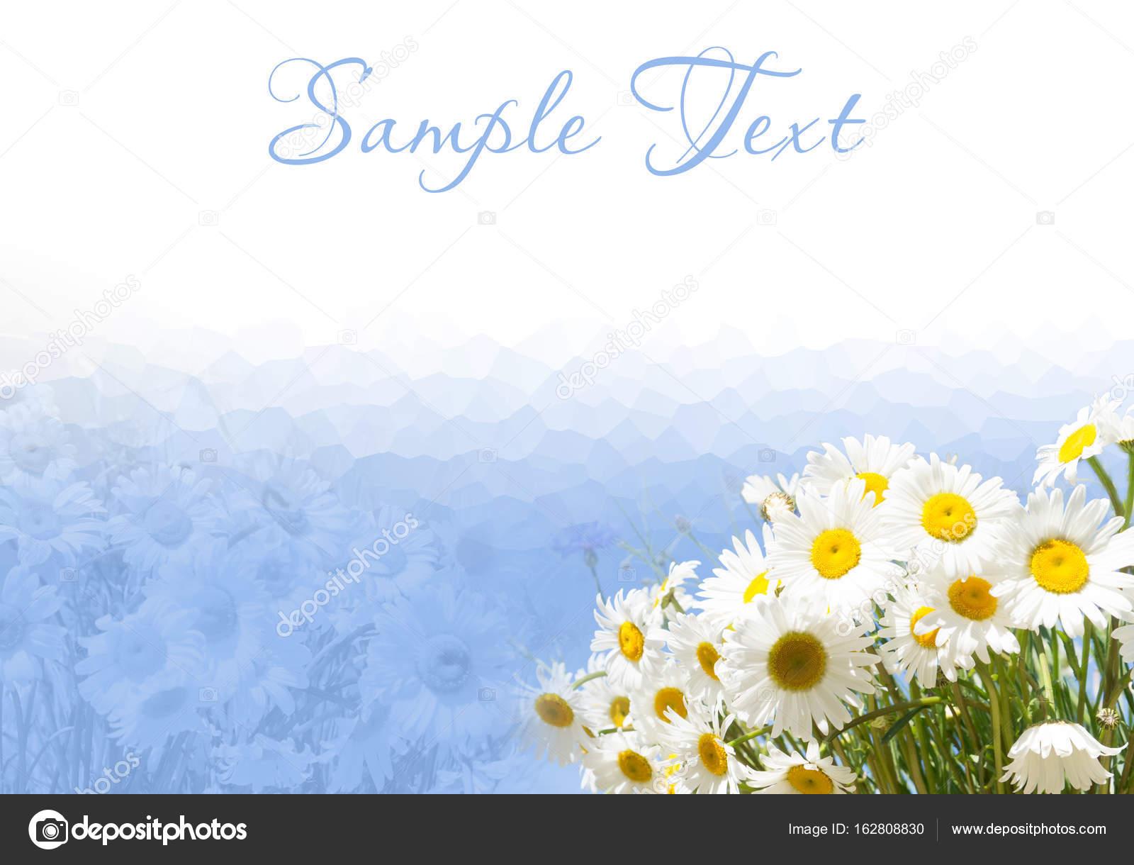 Rahmen und Rand mit Gänseblümchen auf blauem Hintergrund — Stockfoto ...