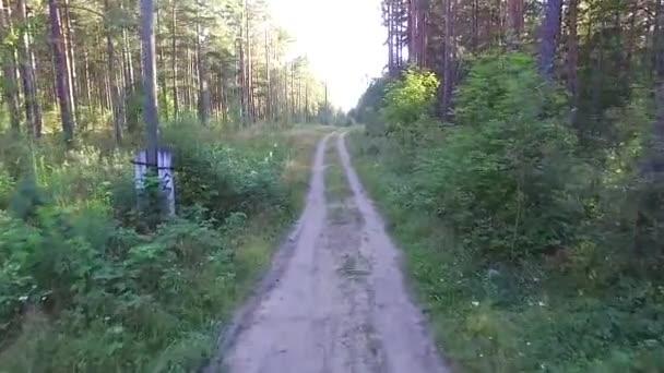 Chystáte se lesní cestě
