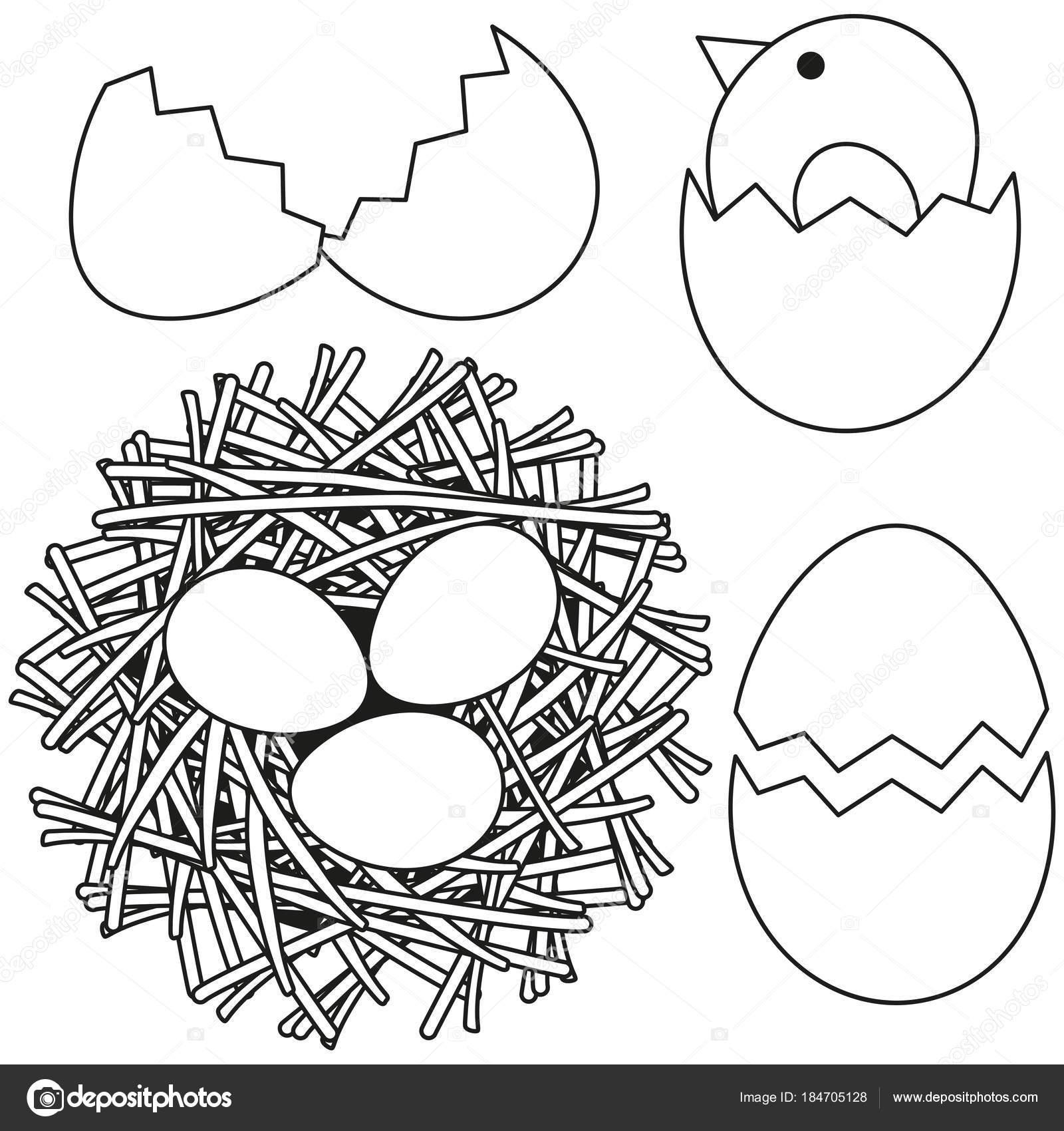 Animado Un Nido Para Colorear Línea Arte Blanco Y Negro Pascua
