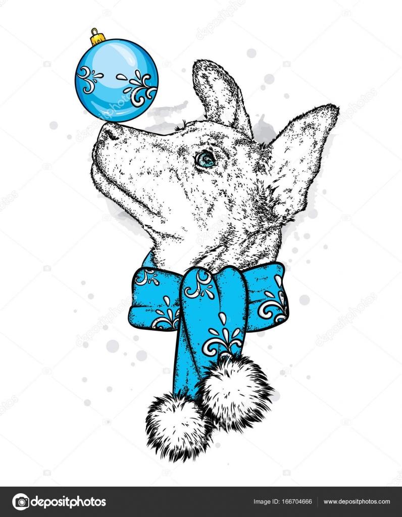 Ein schöner Hund mit einem Weihnachts-Ball auf der Nase. Welpen in ...