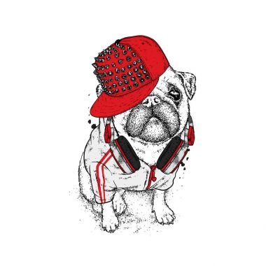 Beautiful pug in a jacket, a cap with spikes and headphones. Vector illustration for a postcard or a poster, print for clothes. Dog hipster in clothes. Fashion & Style. Funny puppy.
