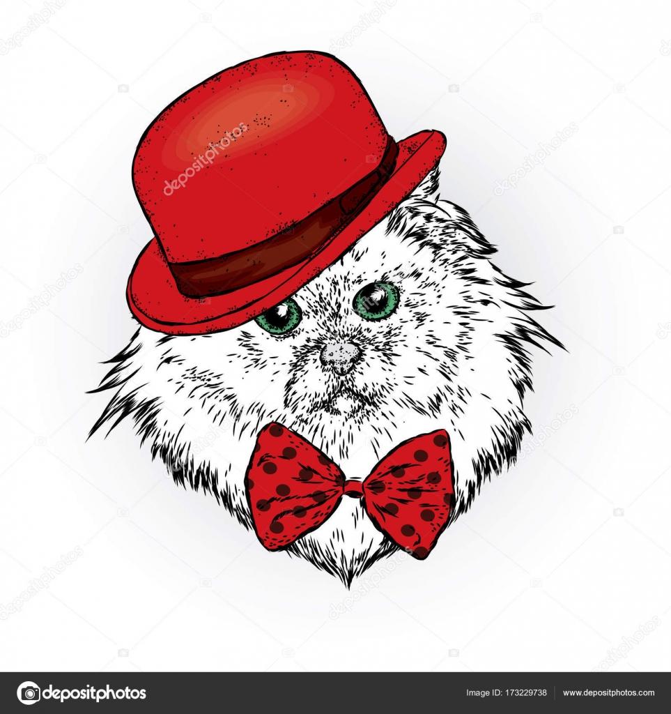 Un Bellissimo Gatto Con Un Cappello E Cravatta Gattino Divertente
