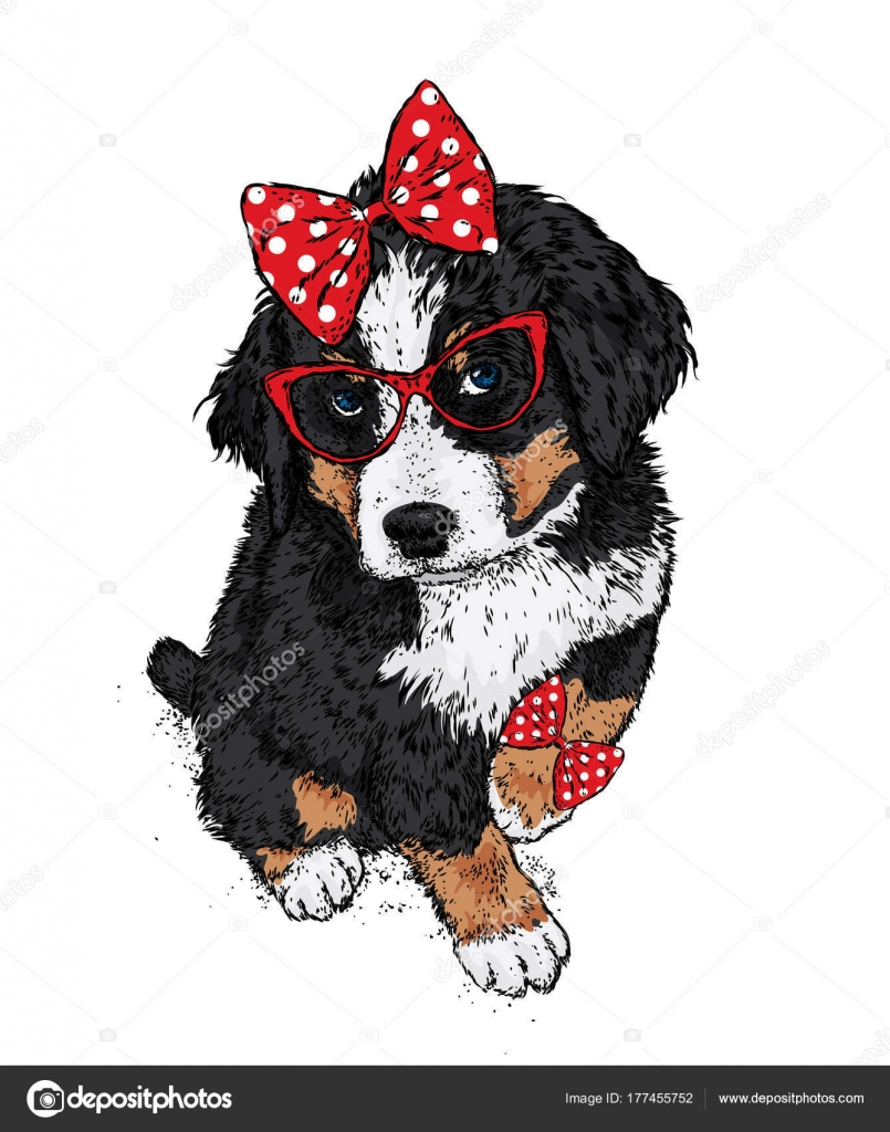 Good Puppies Bow Adorable Dog - depositphotos_177455752-stock-illustration-cute-dog-glasses-bow-vector  Image_479112  .jpg