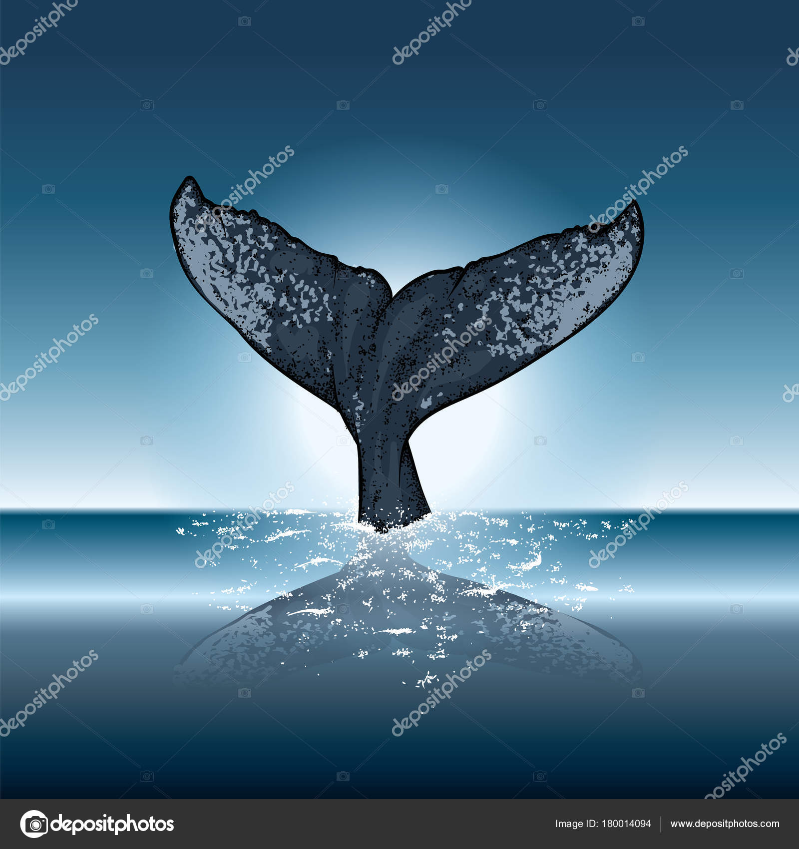 Whale Diving Water Vector Illustration Postcard Poster Print Clothes