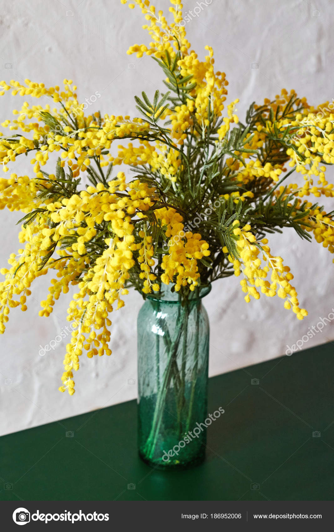 Mimosa Spring Flowers Vase Standing Green Table Bouquet Beautiful