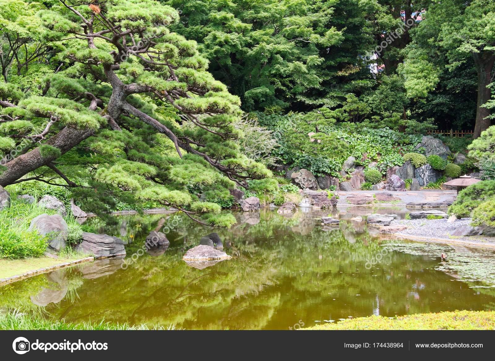 Park Als Tuin : Japanse tuin en vijver u stockfoto jasony