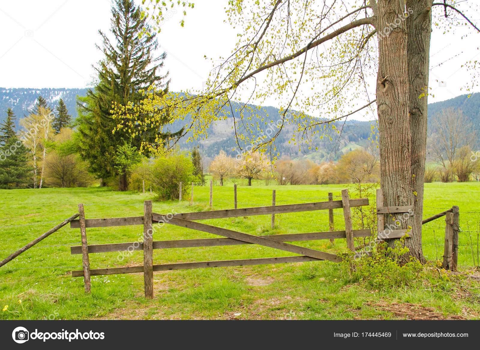 bauernhof zaun mit weide — stockfoto © jasony00 #174445469