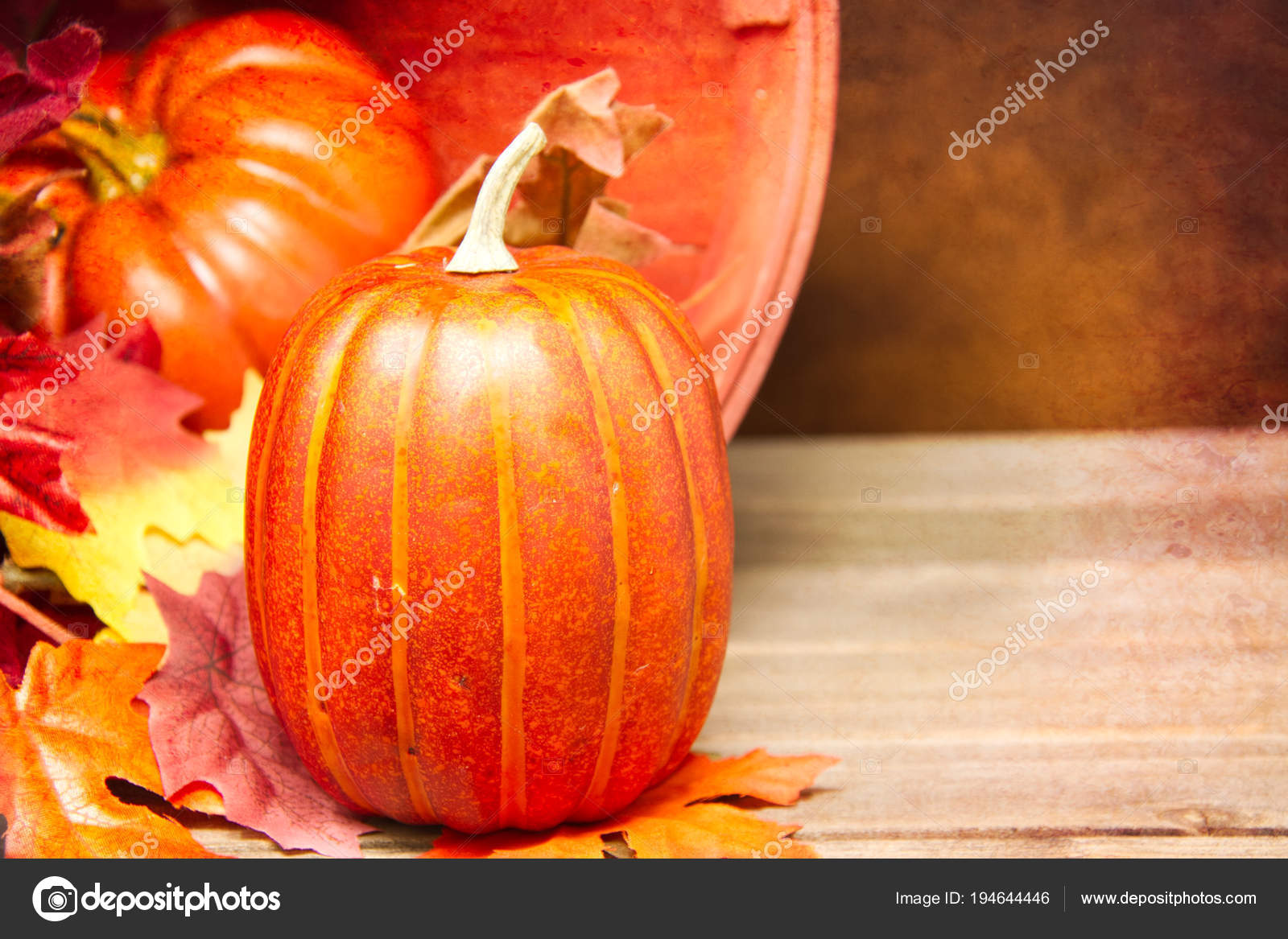 fall themed background featuring small pumpkin focus out focus