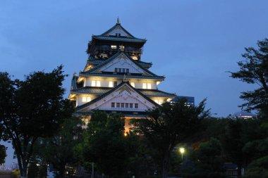 Osaka Castle . Osaka . Japan