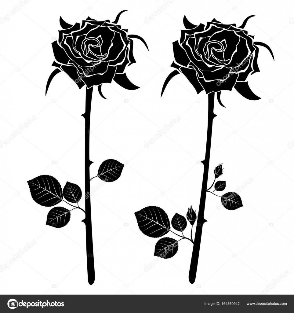 Un Set Di Icone Di Due Rose Nere Illustrazione Di Vettore