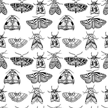 Seamless pattern with moths