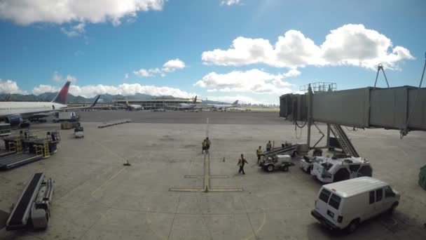 Ground Crew Prepares for Arriving Flight