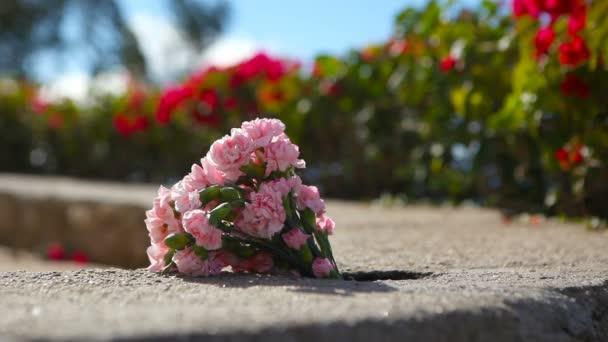 Flowers on Stone Ledge