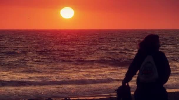 İki kadın batımında kumsal boyunca yürüyüş
