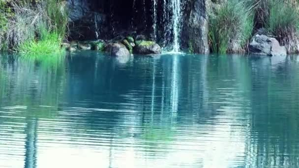 Calm serene pond with waterfall / Looking down a calm and serene pond with waterfall.