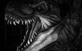 Fotografia Tyrannosaurus rex dinosauro con le zanne, lunghe, i denti affilati