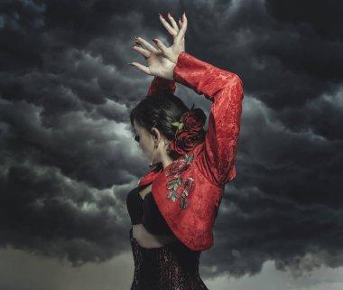 Spanish flamenco dancer with storm background