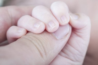 Hand of newborn holding father