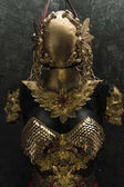 Fotografie Protection, gold armor and metal pieces handmade, it has a golden breastplate of dragon scales with a helmet of gothic pieces and red feathers