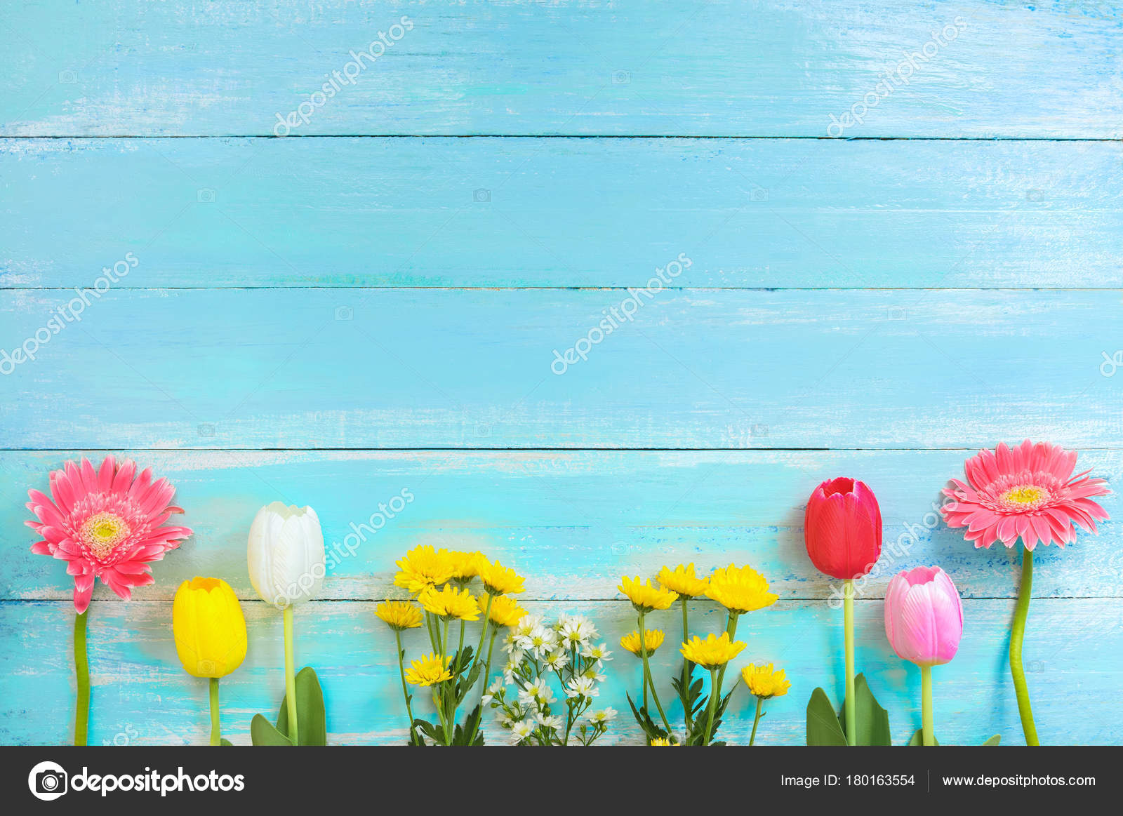 Different Kinds Colorful Flowers Line Blue Wooden Background Top
