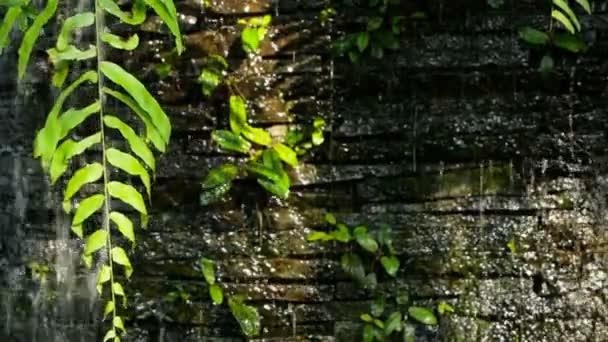 Vodopád s zelené rostliny dekorace vpředu pro pozadí