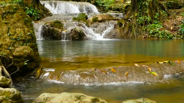 Clear water flows down cascades of waterall rapids in tropical rainforest